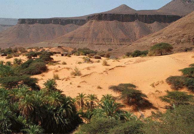 Desert scenery in the Adrar region - Mauritania holidays